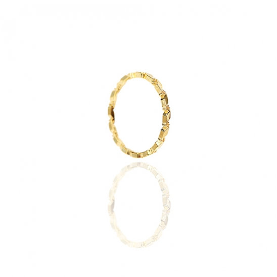 pared ring R021